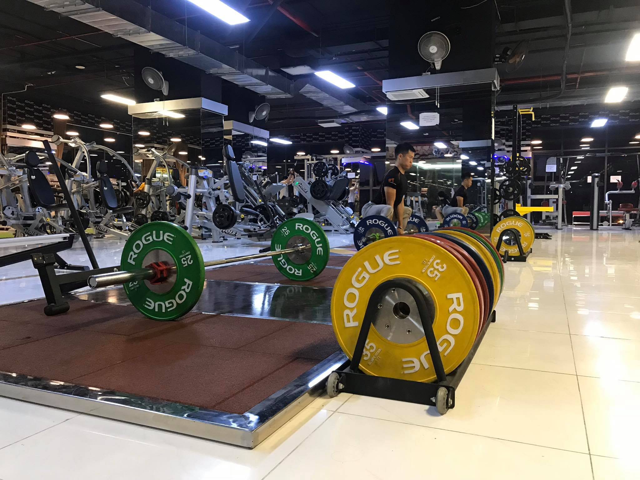 tạ crossfit joinder rogue