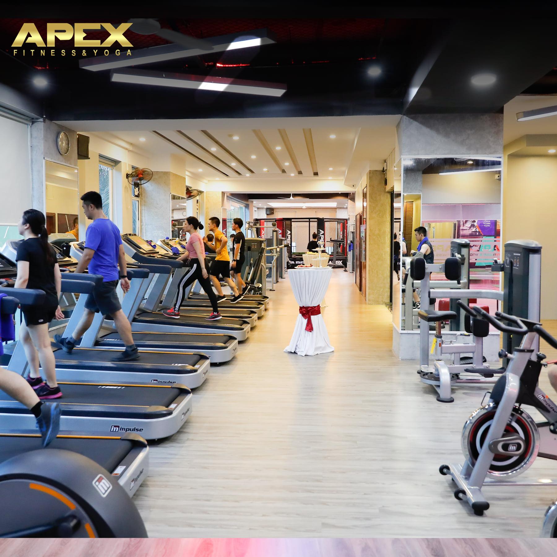 setup lắp đặt phòng tập gym cao cấp tại hà nội